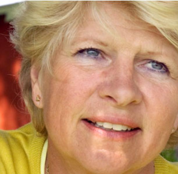 Anne Loström, Anneloo AB